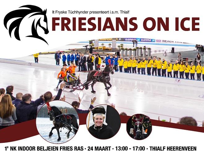 Afbeeldingsresultaat voor frisians on ice